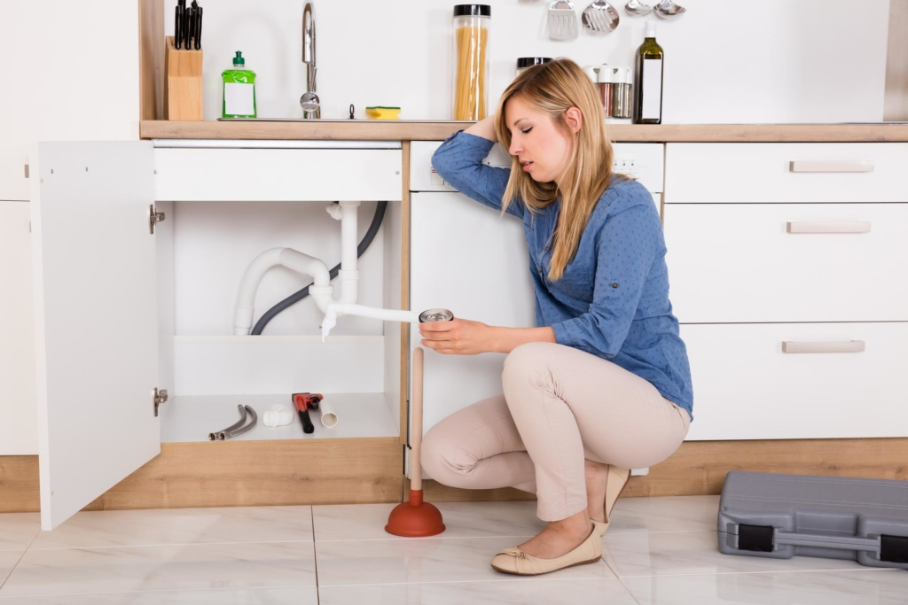Avoid These 6 Potential Plumbing Disasters Over the Holidays
