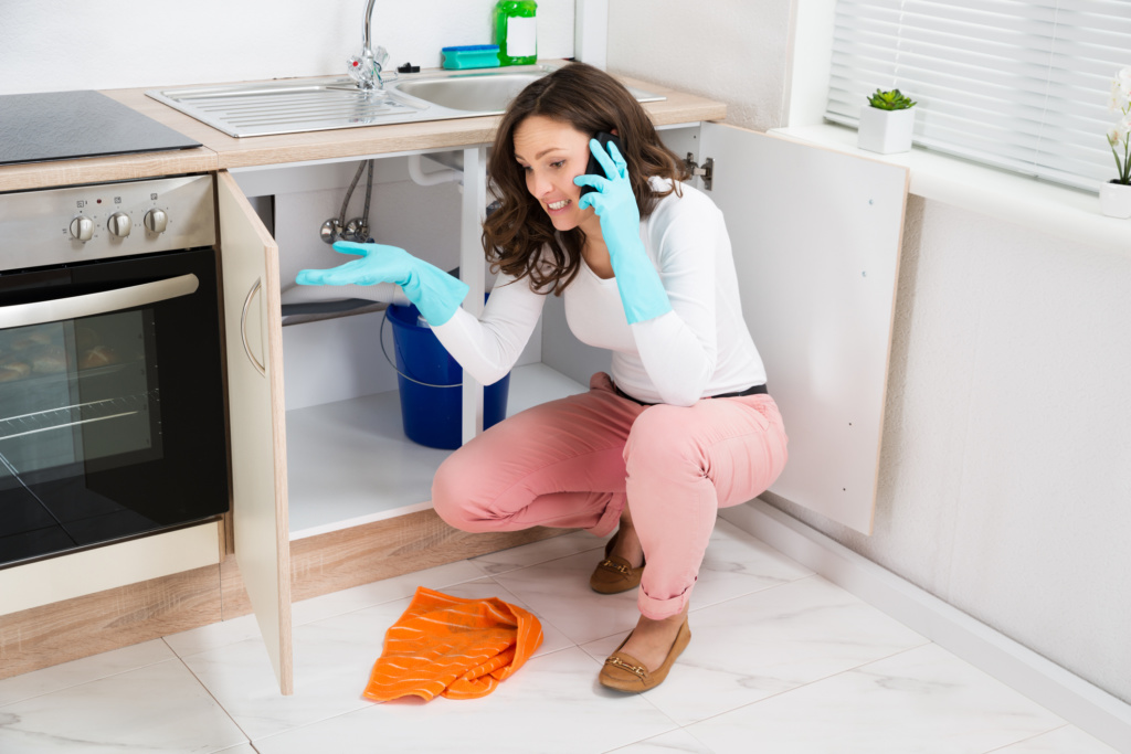 Planning a Staycation? Avoid These Common Plumbing Problems!